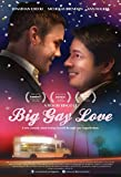 Big Gay Love [DVD]