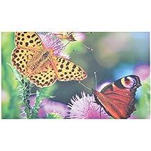 Fallen Fruits impreso Jardín Felpudo en un diseño de mariposas