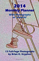 2014 Monthly Planner: With Photographs of ShoeFiti