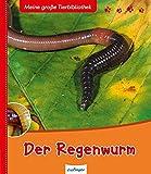 Meine große Tierbibliothek: Der Regenwurm
