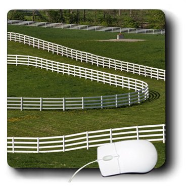 3drose LLC 20,3x 20,3x 0,6cm weiß Zaun Calumet Pferd Farm Lexington Kentucky Adam Jones Maus Pad (MP 90359_ 1) Adams Farm