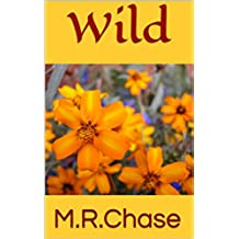 Wild (Dirt Road Heartstrings Book 1) (English Edition)