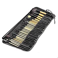 STELLAIRE CHERN 32 Pieces Professional Makeup Brush Set Cosmetics Brushes Kit Essential Kit with Bag