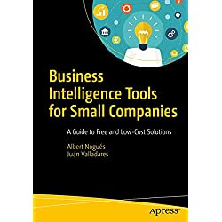 Business Intelligence for Tools for Small Companies: A Guide to Free and Low-Cost Solutions