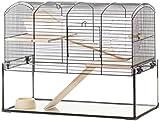 Little Friends Mayfair Gerbilarium Cage with Accessories, 51.5 x 28 x 40 cm