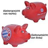 FC Bayern Sparschwein - Fußball