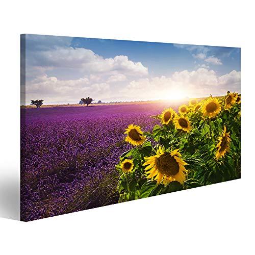 Bild Bilder auf Leinwand Lavendel und Sonnenblumen Felder, Provence Wandbild, Poster, Leinwandbild NTG