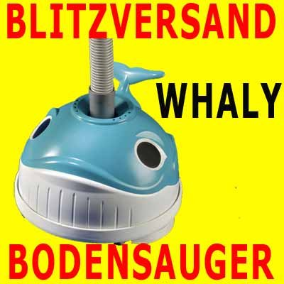 Hayward Bodensauger Whaly -