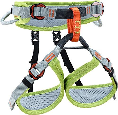 Climbing Technology Ascent, Imbracatura Unisex Bambini, Verde/Grigio, XXS