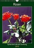 Rosen - Symbol der Liebe und Verehrung (Wandkalender 2019 DIN A4 hoch): Rosenkalender - das besondere Geschenk (Planer, 14 Seiten ) (CALVENDO Kunst)