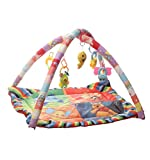 #6: Archana Happy Play Gym (Multicolor)