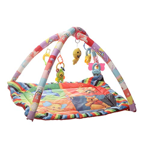 NHR Happy Play Gym (Multicolor)