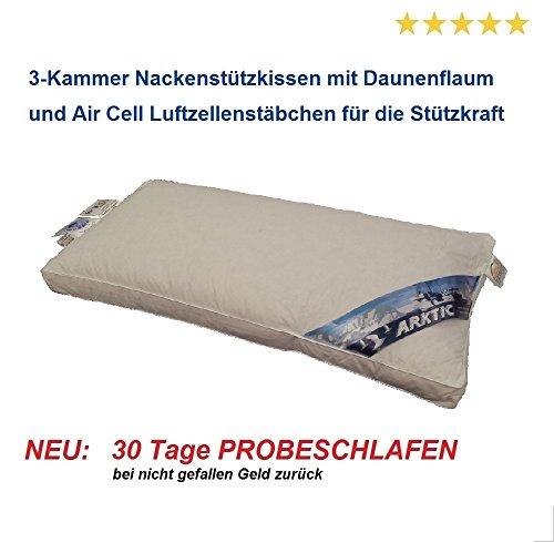 Air Cell Daunen Nackenkissen 40x80 Premium Daunenflaum 3-Kammer 5 cm Außensteg NEU