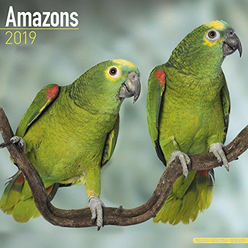 Amazons - Amazonenpapageien 2019: Original Avonside-Kalender [Mehrsprachig] [Kalender]