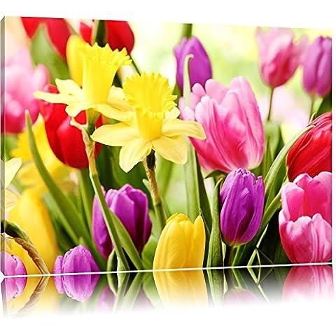 Narcisi e tulipani colorati Formato: canvas 80x60auf, XXL Immagini enormi completamente Pagina con la barella, incorniciatura sulla foto muro con cornice, più conveniente che dipinti ad olio e immagine, nessun manifesto o locandina - Bella Narciso