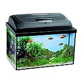 Aquael Aquarium Set AQUA4KIDS inkl. Abdeckung, Filter, Heizer 40x25x25 rechteckig