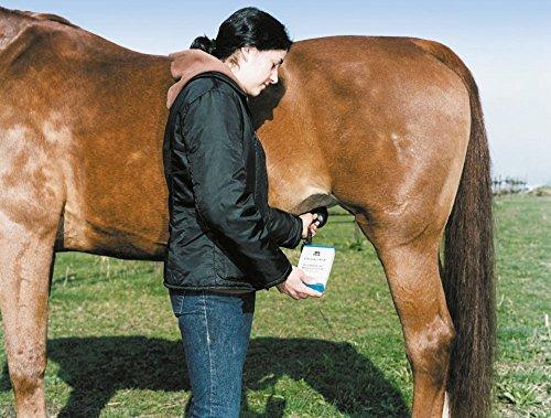 Kerbl 323 Trächtigkeitsgerät für Pferd -