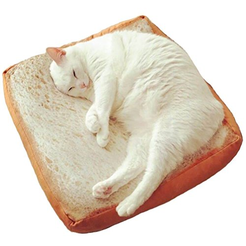 Tapis original Momangel pour chat - Design en forme de tranche de pain