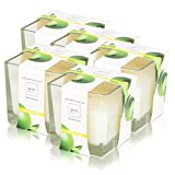 Essentials by Ipuro Duftkerze Lime Light 170g (5er Pack)