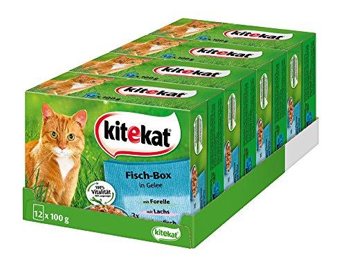Kitekat Katzenfutter Fisch-Box in Gelee, 48 Beutel (4 x 12 x 100 g)