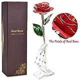 N2N Vergoldete Rose, 24k Gold Rose Handgefertigt Forever Konservierte Rose Künstliche Blume mit Stand und Geschenkbox für Frau Freundin/Muttertag/Geburtstag/Hochzeitstag/Künstliche Echt Rose(Rot)