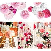 Ailiebhaus 24 Stück Seidenpapier Pompons Blumenball zum Aufhängen Hochzeit Party Nursery Dekoration