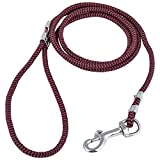 #10: Seven Star International Puppy Round Lead - Small