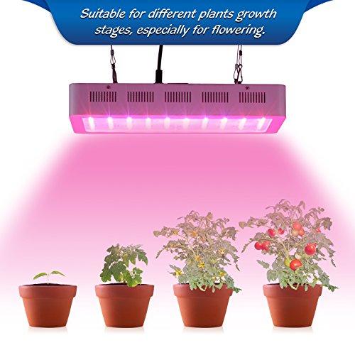 roleadro led floraison lampe horticole 300w dimmable 100 leds lampe croissance grow light pour. Black Bedroom Furniture Sets. Home Design Ideas