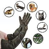 Bloomma Anti-Morsure/égratignures Jardinage Gants de Protection des Animaux Sauvages , Gants de Manipulation des Animaux Chat Chien Oiseau Serpent Perroquet Lézard