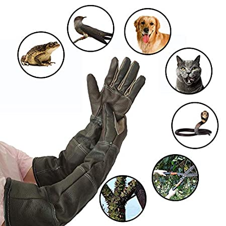 PER Haustier Handschuhe Pelz Umgang Handschuhen Verstärkte Leder Anti Biss Schutzhandschuhe für Hund und Gartenarbeit