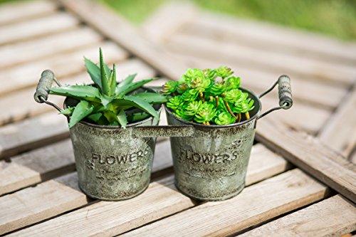 rustico-ferro-doppia-metallo-secchio-vaso-di-fiori-planter