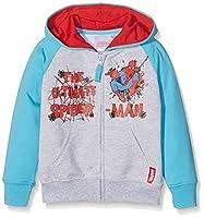Marvel Boy's 16-4535 TC Jacket, Grey (Gris), 4 years (Manufacturer size: 104 cm)