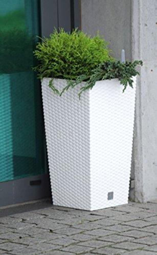 Rattan Blumentopf Übertopf Innen Außen mit Innenkasten Wetterfest, weiß, 32 x 32 x 61,5 cm by Stolmet (49L, Weiß)