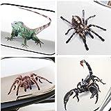 YianBestja 2X Wasserdicht und Sonnenschutz Eidechse Spinne Skorpion Autoaufkleber, Aufkleber für Auto Motorrad Fahrrad Helm Laptop Skateboard Snowboard (4X 3D Tierstil)