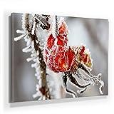 Winter Bild A390, 1 Teil 90x60cm Leinwand auf Holzrahmen aufgespannt, FineArt Print, UV-stabil und wasserfest, Kunstdruck für Büro oder Wohnzimmer, Deko Bild