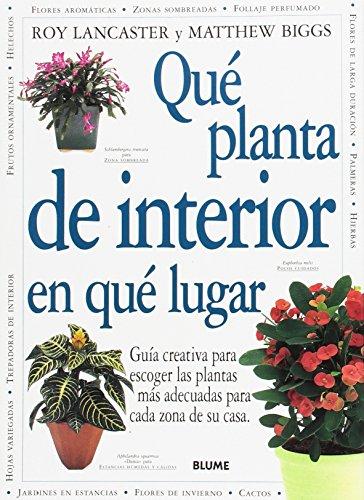 Que Planta De Interior En Que Lugar