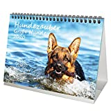 Hundezauber Große Hunde DIN A5 Tischkalender/Kalender 2020 Welpen und Hunde Edition Seelenzauber