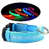QYHSS Leuchthalsband für Hunde Aufladbar LED Hundehalsband 100% Wasserdicht Blinkende Lichter mit USB Halsband wiederaufladbar Längenverstellbarer Sicherheit Kragen für Hunde