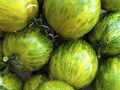 Tomate 'Green Zebra' 20 Samen