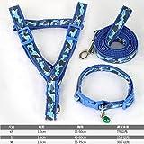 Y-Hui Puppy Dog, Zugseil, kleinen Hund, Katze, grossen Weg Hund Seil, Teddy Hund Kette Halskette, PET-Produkte, Blau Camo 3-teiliges Set, Art.Nr. S