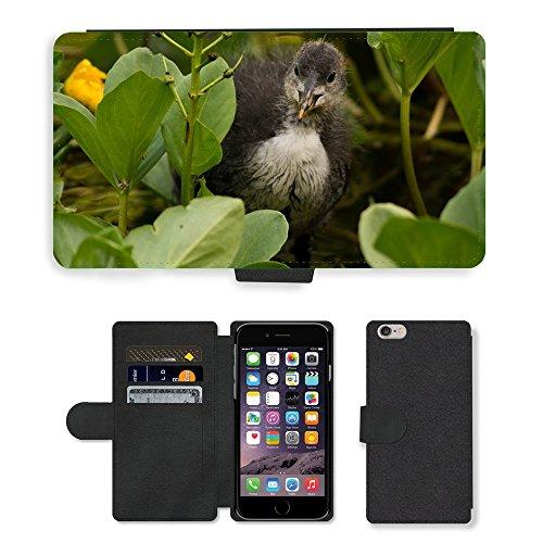 Just Mobile pour Hot Style Téléphone portable étui portefeuille en cuir PU avec fente pour carte/Plantes/oiseaux Foulque m00138504Animal/Lys/Apple iPhone 6Plus 14cm