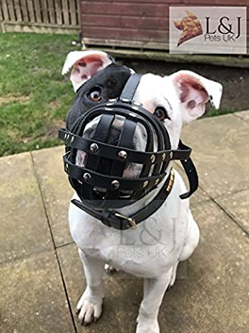 Light Real leather Dog Muzzle for Staffordshire Bull Terrier Staffy , Staffie (Black, S2)