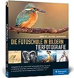 Die Fotoschule in Bildern. Tierfotografie