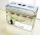 Hatch Box Suspend Aquarium Acryl Guppy Baby Kleine Fische Trennung Breeder Box, keine Lücke