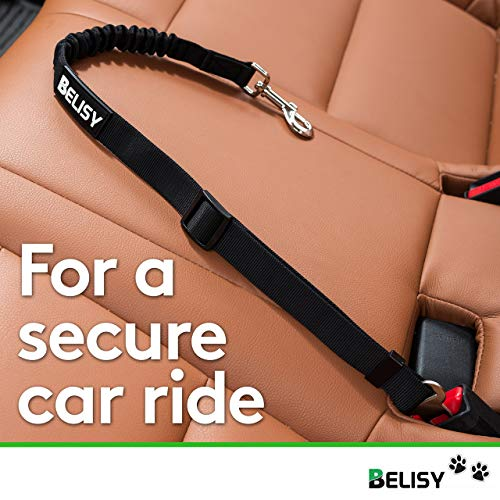 BELISY Hunde-Sicherheits-Gurt fürs Auto - 3