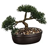Bonsai Pot Ceramique H.23cm by Atmosphera