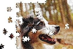 hansepuzzle Foto-Puzzle - 500 Teile mit eigenem Bild in hochwertiger, individueller Kartonbox, Puzzle-Teile in wiederverschliessbarem Beutel