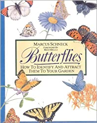 Butterflies: How to Identify and Attract Them to Your Garden by Marcus Schenck (2001-03-01)