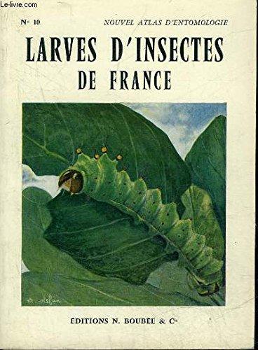 atlas-des-larves-d-39-insectes-de-france-vers-blancs-chenilles-asticots