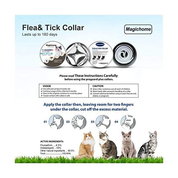 Magichome Flea and Tick Collar for Dogs, Adjustable Length Waterproof Dog Anti Flea Collar 4
